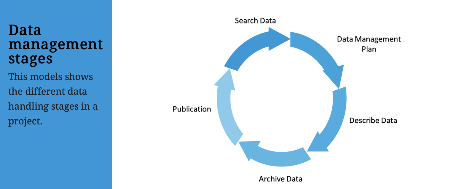 research data cycle